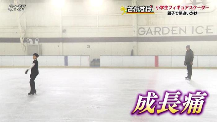 スケート と の 何 他 か フィギュア